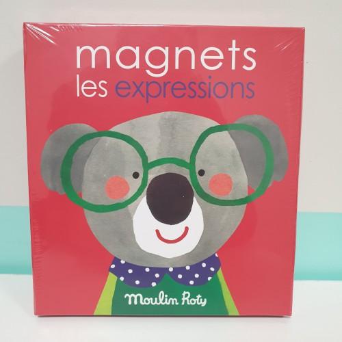 Juego magnético Expresiones